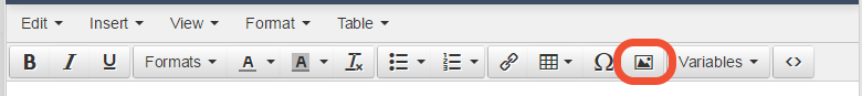"new task bar in question type ""text/ media"""